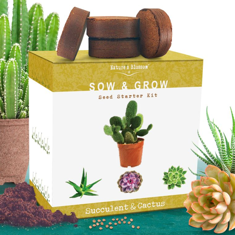 Nature's Blossom Succulent and Cactus Growing Kit