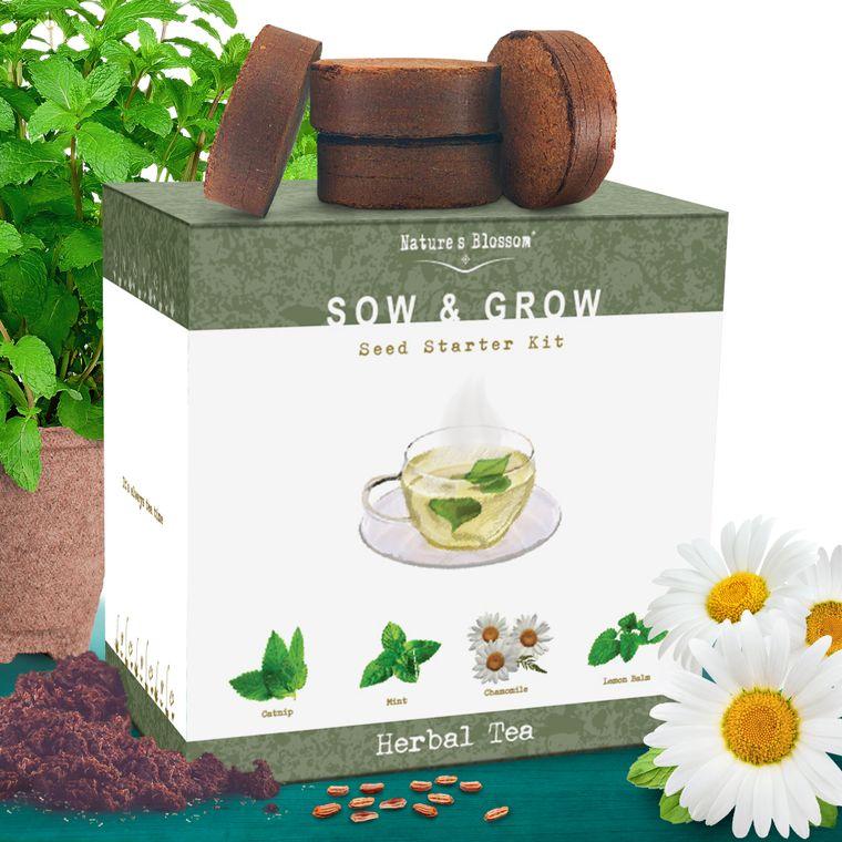Grow 4 Herbs for Making Herbal Tea