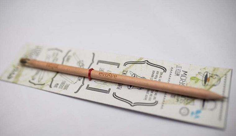 Plantable Pencil and Notepad