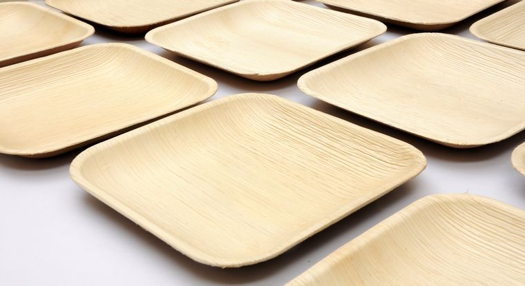 EcoHost - Disposable eco-friendly palm leaf dinnerware