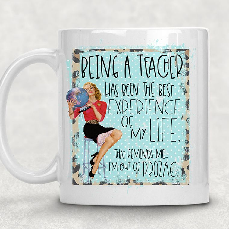 Being a Teacher is the Best Experience of my Life Adult Themed 11 oz. Funny Mug